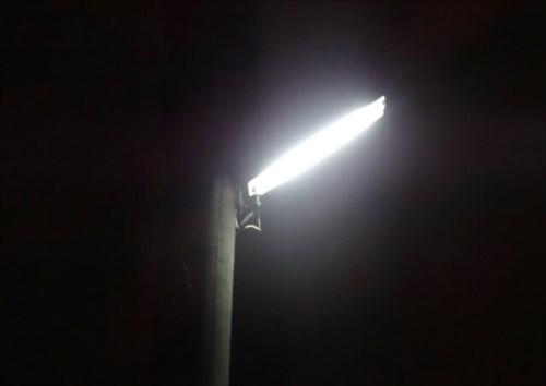 そもそもなぜ虫は光に集まるのか?